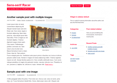 Sans-serif Racer WordPress Theme 0.5